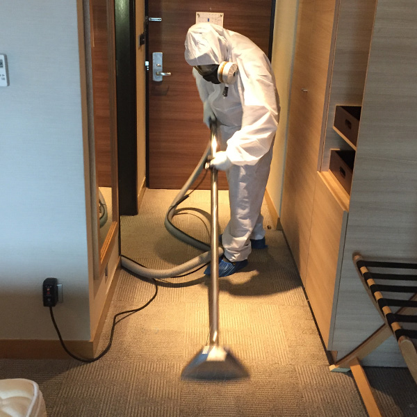 Disinfection Service | Carpet Cleaning