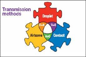 H1N1 influenza virus - transition methods